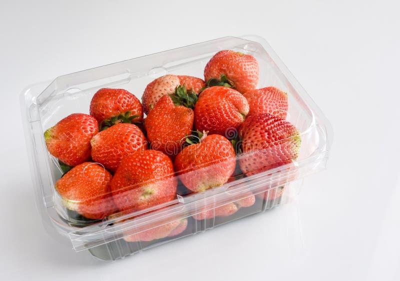 在包装,白色背景的草莓 库存图片