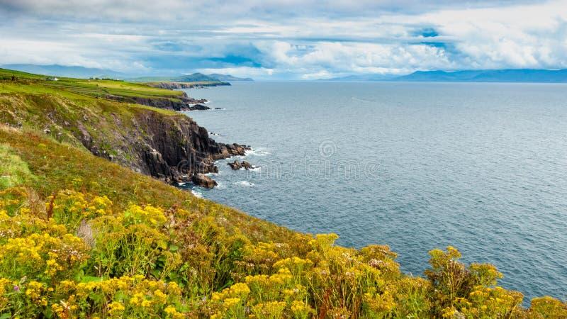 在北大西洋的爱尔兰海岸线 库存图片