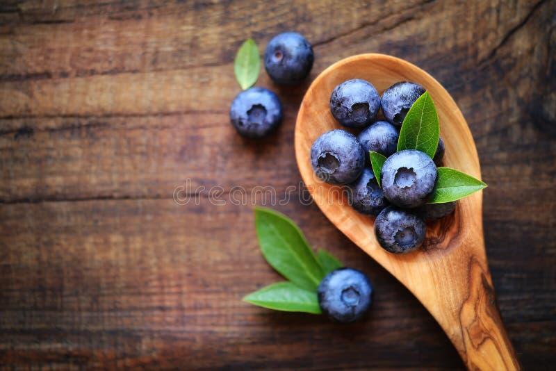 在匙子的蓝莓 库存照片