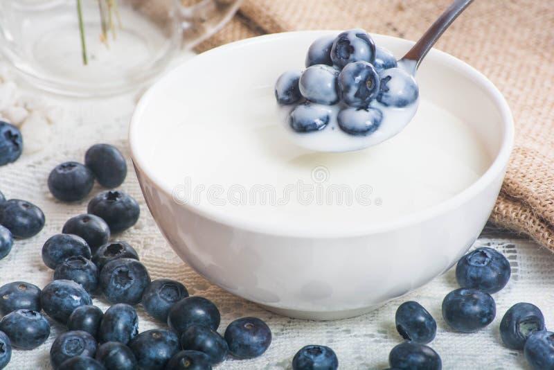 在匙子的水多和新鲜的蓝莓用酸奶 库存照片