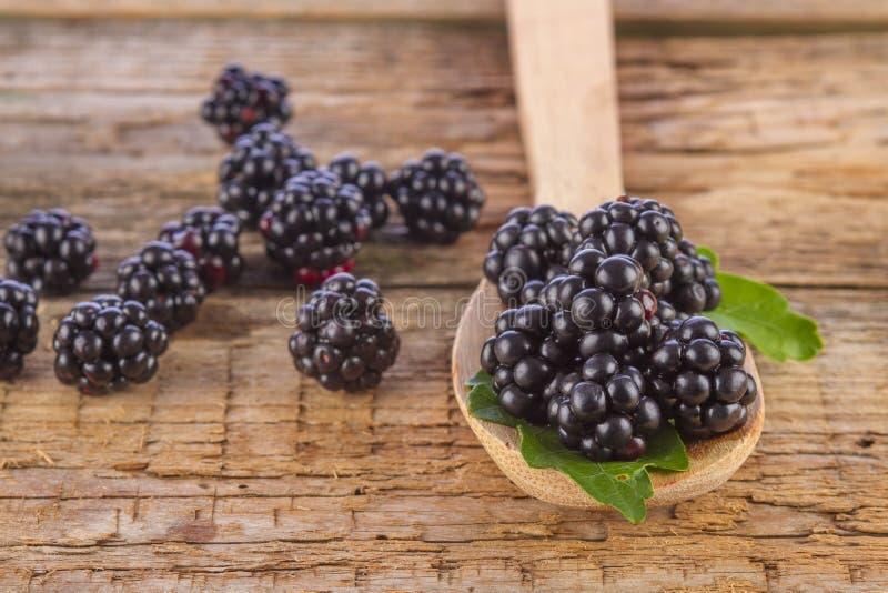 在匙子的黑莓在木背景 库存照片