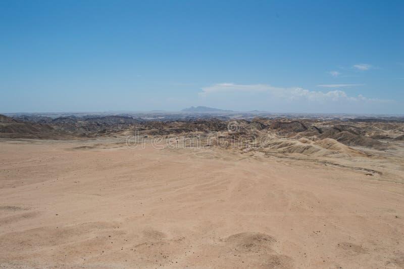 在千岁兰平原的月亮风景在斯瓦科普蒙德,纳米比亚附近 免版税库存图片