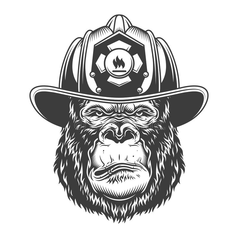 在单色样式的严肃的大猩猩 皇族释放例证