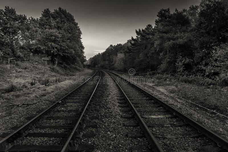 在单音的火车轨道 库存图片