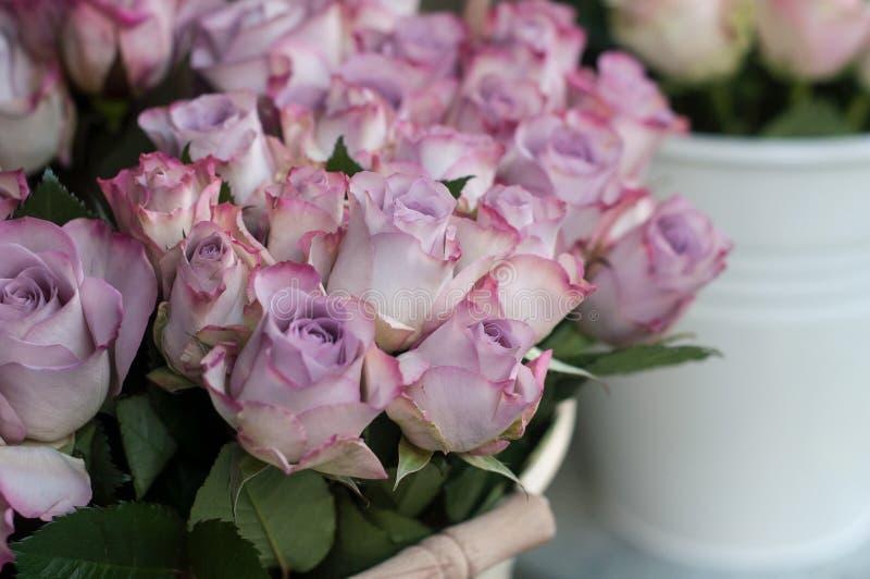 在卖花人的桃红色玫瑰街道的 免版税库存照片