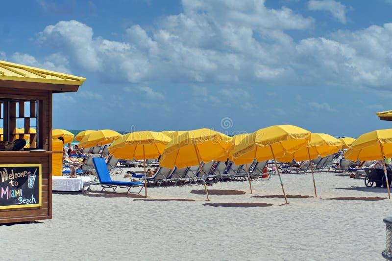 在南海滩的伞在迈阿密 免版税库存照片