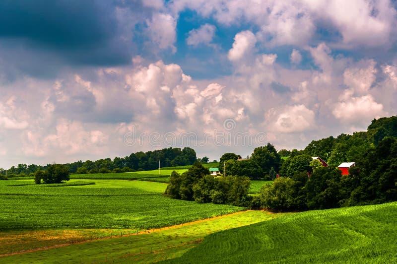 在南约克县种田, PA农村乡下  免版税库存图片