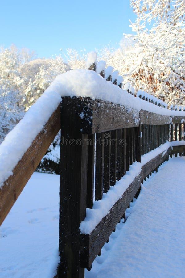 在南部的意想不到的雪天 库存照片