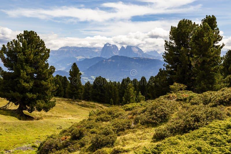 在南部蒂罗尔,意大利的山 库存照片