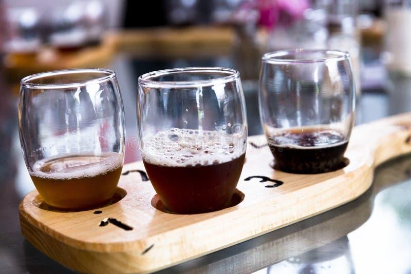 在南非的品尝啤酒 免版税库存图片