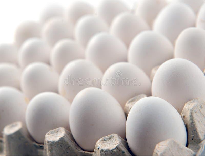 在卡式磁带盘子或纸盒箱子的鸡白鸡蛋 库存图片