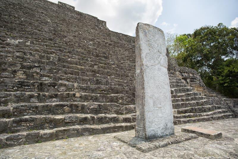 在卡拉克穆尔墨西哥的玛雅人stelae 库存图片
