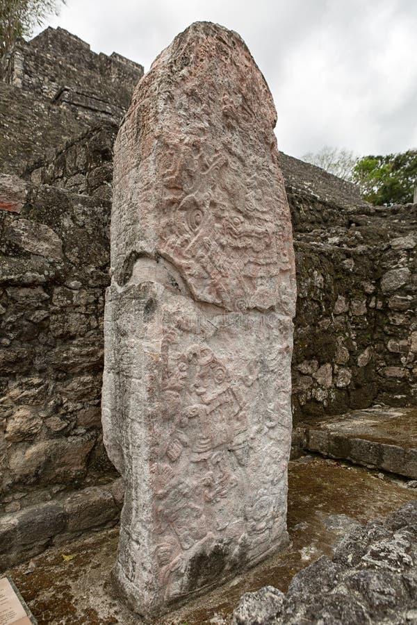 在卡拉克穆尔考古学站点的玛雅人stelae在墨西哥 图库摄影