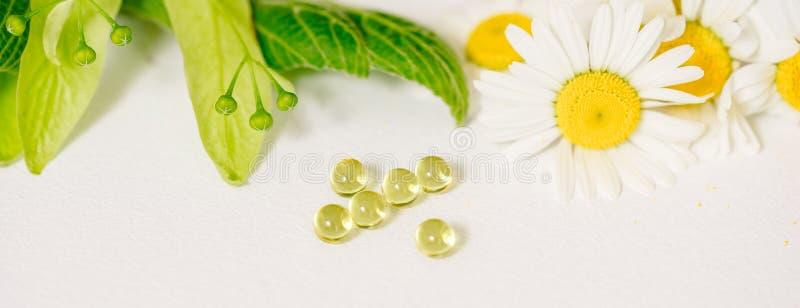 在卡拉服特klubke的白色片剂,绿色叶子药用植物,同种疗法药物 叶子菩提树,春黄菊flo花和果子  库存照片
