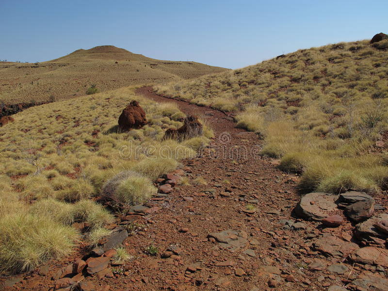 在卡瑞吉尼国家公园,西澳州附近的登上布鲁斯 库存照片