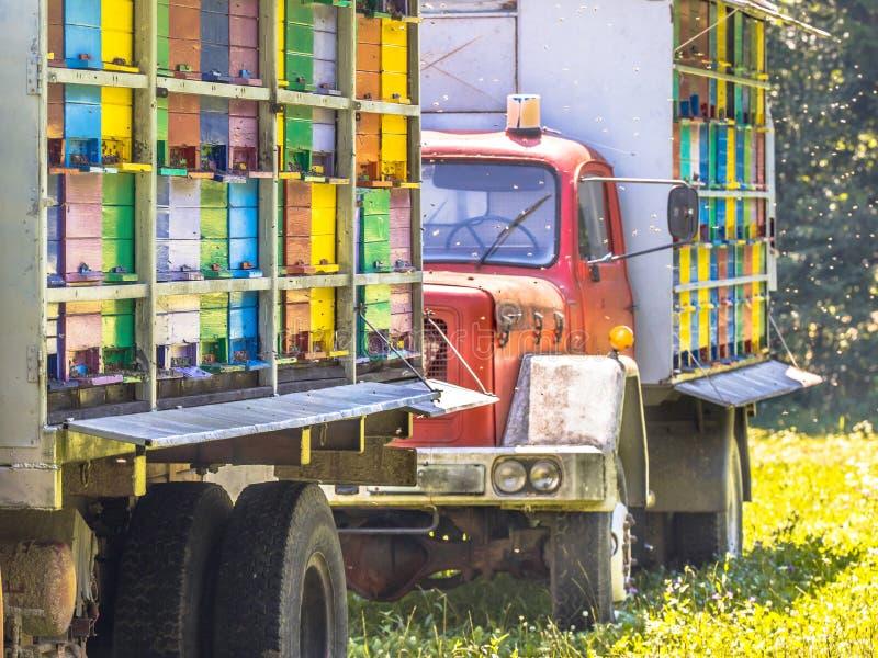 在卡车的流动蜂箱 图库摄影