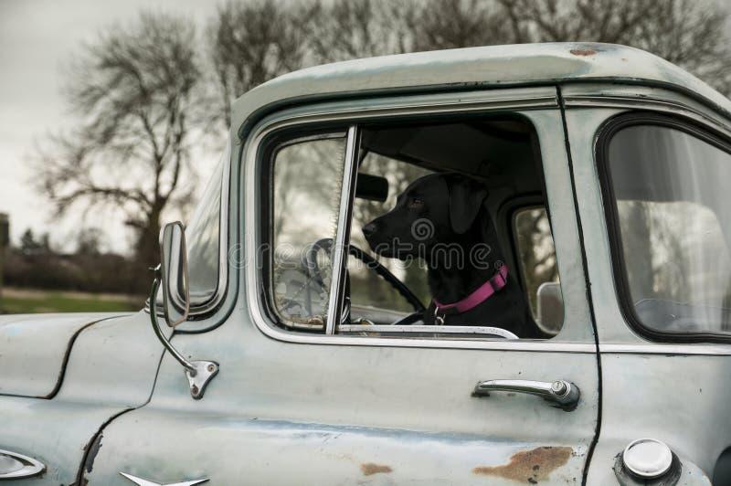 在卡车 免版税图库摄影