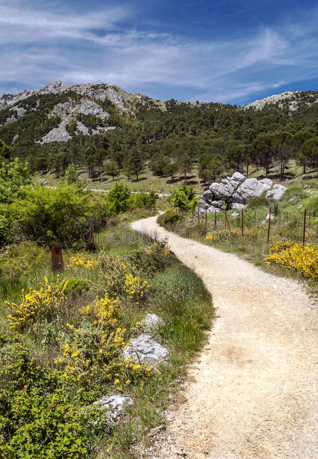 在卡迪士山的路  库存照片