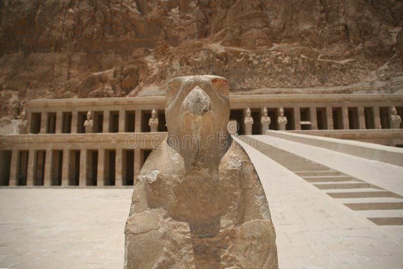 在卢克索, Egpyt西岸的Hatshepsut寺庙  库存照片