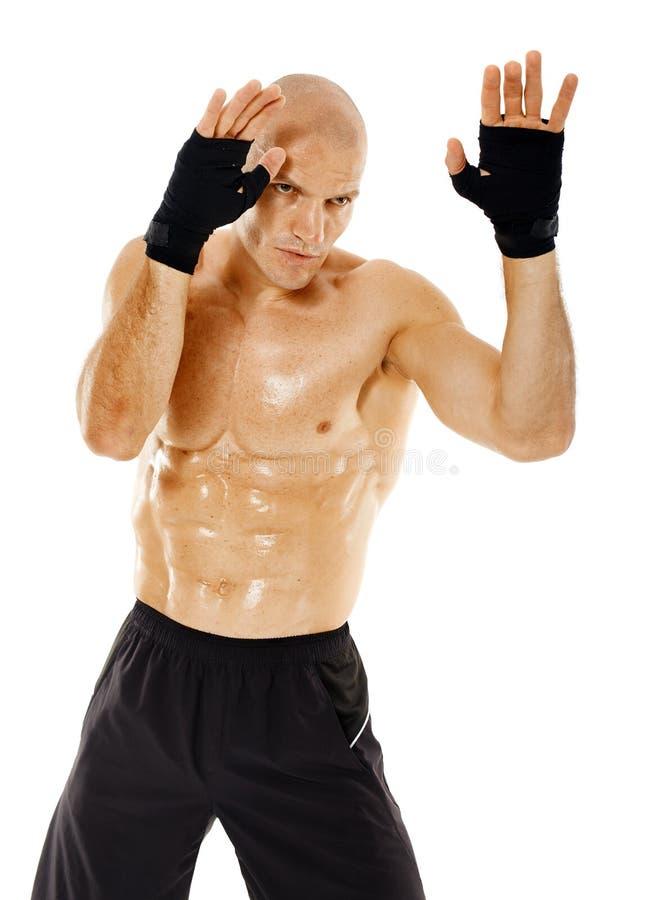 在卫兵姿态的Kickboxer 库存照片
