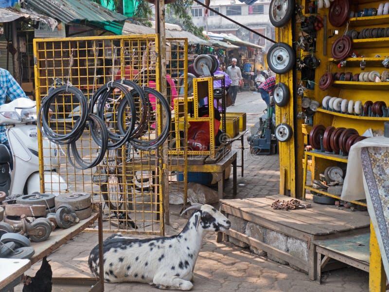 在印地安市场摊位的山羊 库存图片