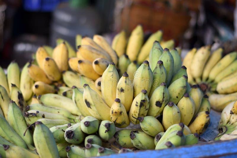 在印度加尔各答的Patuli Floating Market市场销售的香蕉水果 库存照片