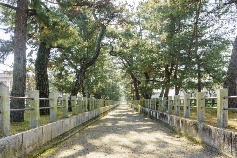 在历史Horyu籍前面的平直的走道 免版税图库摄影