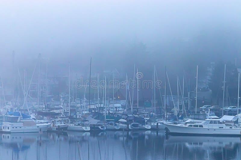 在厚实的清早雾期间的充分的港口 图库摄影
