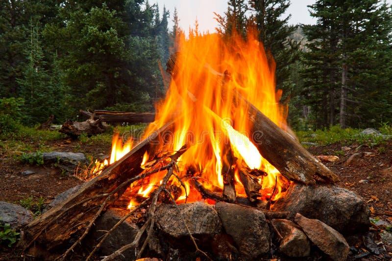 在原野露营地的营火 库存图片