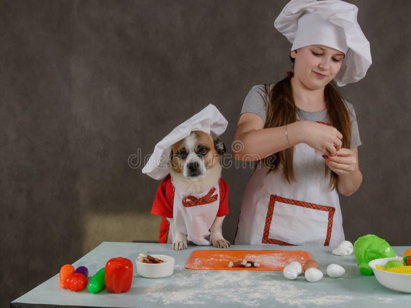 在厨房里玩狗的女孩 库存图片