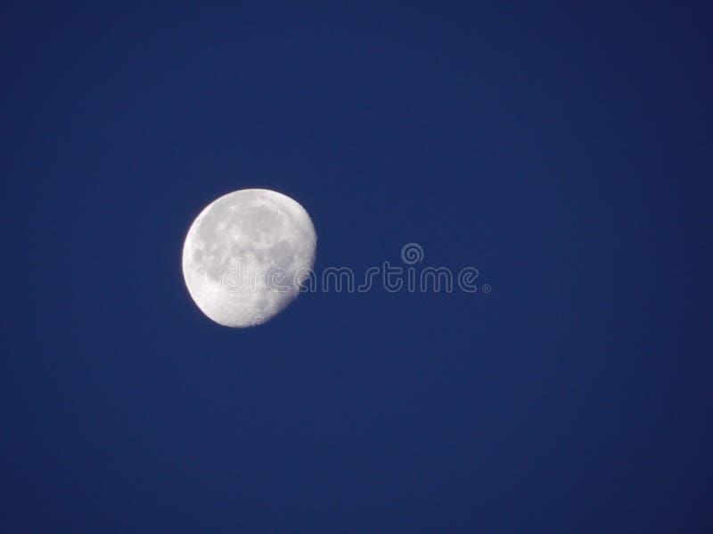 在及早norning的蓝天与壮观的月亮 库存照片