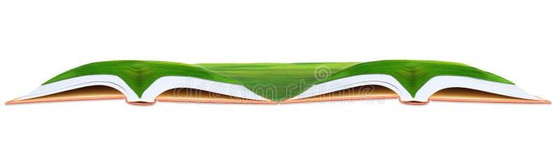 在双开放书用途的绿草领域作为多用途背景 库存图片