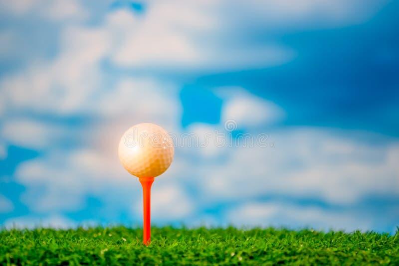 在发球区域的高尔夫球击中它的高尔夫球运动员的 免版税库存照片