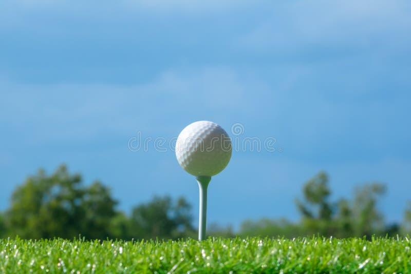 在发球区域的高尔夫球在天空蔚蓝的高尔夫球场 免版税库存照片