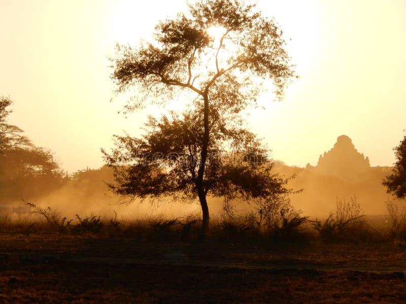 在古庙的日落 图库摄影