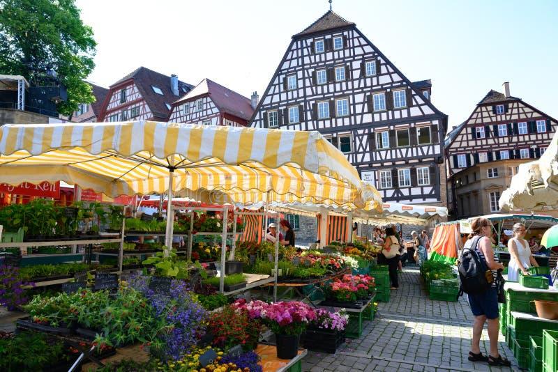 在古老历史的房子,施韦比施哈尔县,亚丁乌特姆博格,德国半木料半灰泥的房子前面的每周市场  免版税库存图片