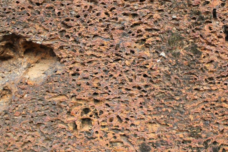 在Banteay Srei, Angkor,柬埔寨的概略的石表面 免版税库存照片