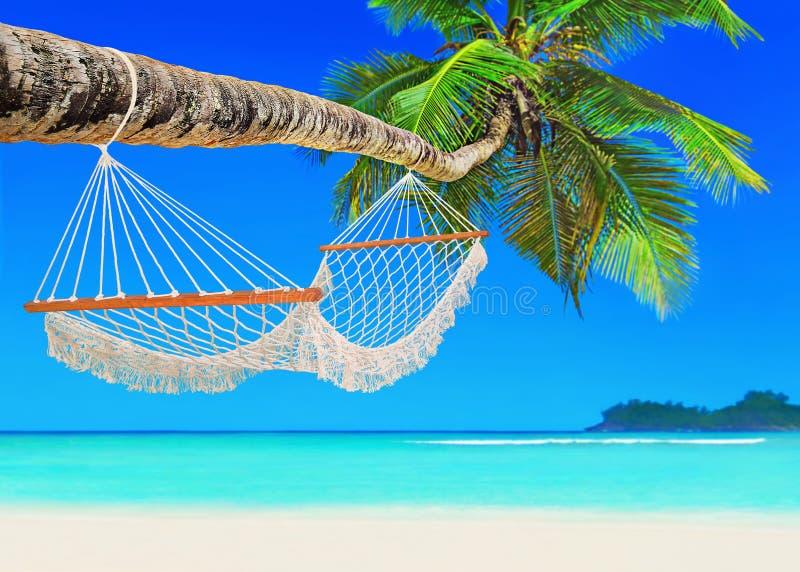 在可可椰子的吊床在热带含沙海洋海滩海岛 免版税库存照片