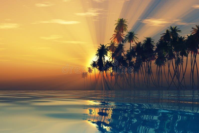 在可可椰子里面的太阳光芒 免版税库存图片