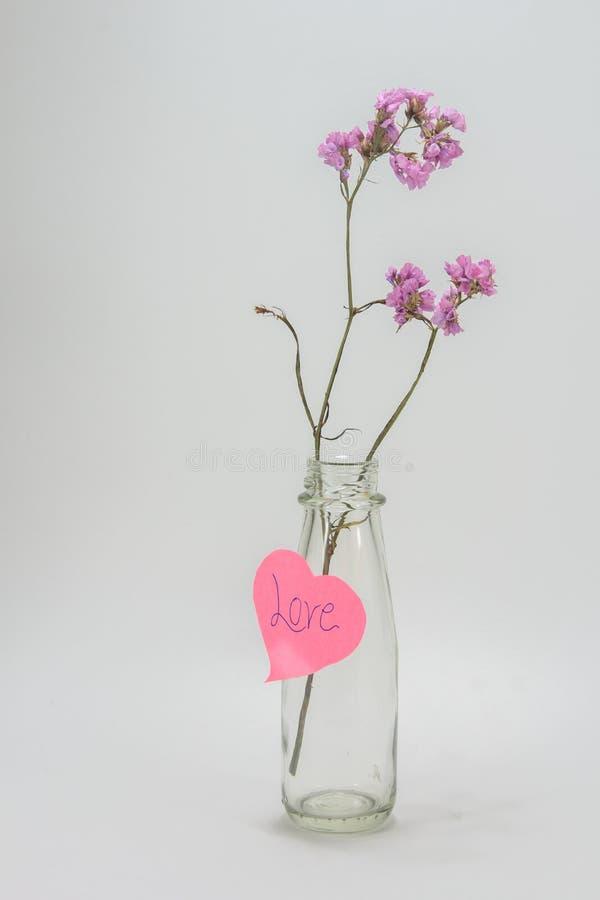 在可爱的玻璃瓶的干燥花 免版税库存照片