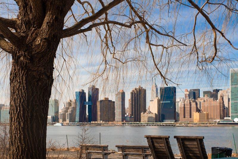 在台架国家公园的纽约地平线通过被看见的树在长岛市 免版税图库摄影