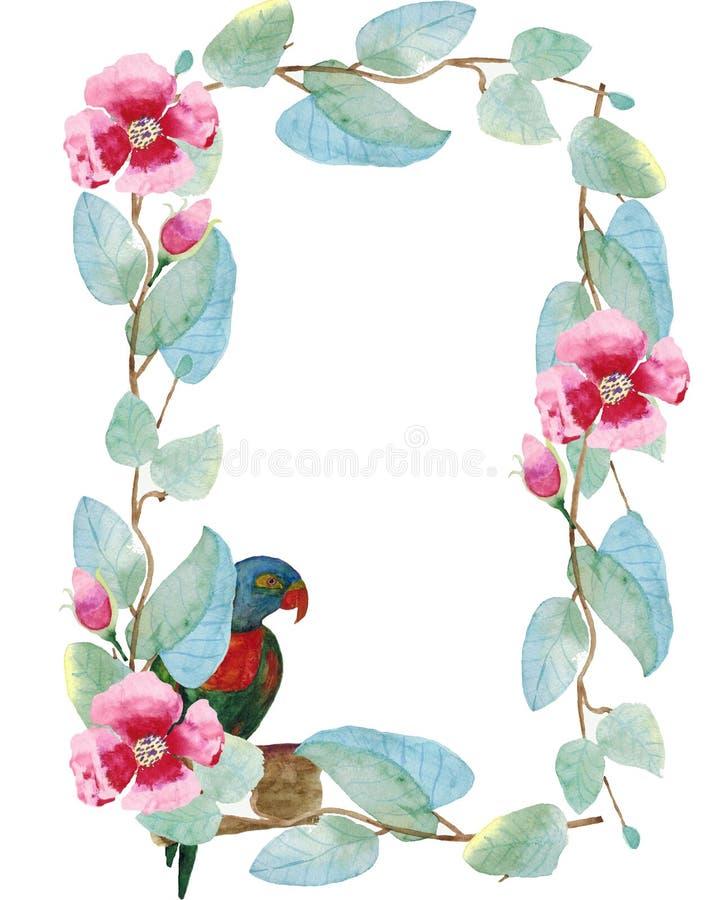 在叶子和花一个长方形框架的水彩例证与鹦鹉 向量例证