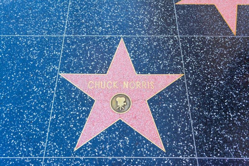 在名望好莱坞步行的查克・罗礼士星  库存照片