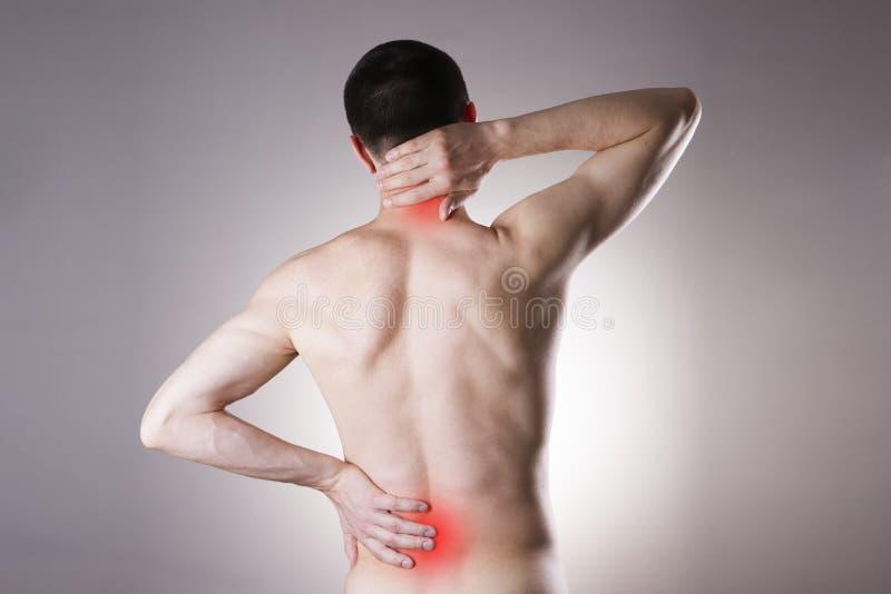 在后面和脖子的痛苦在人 免版税库存图片