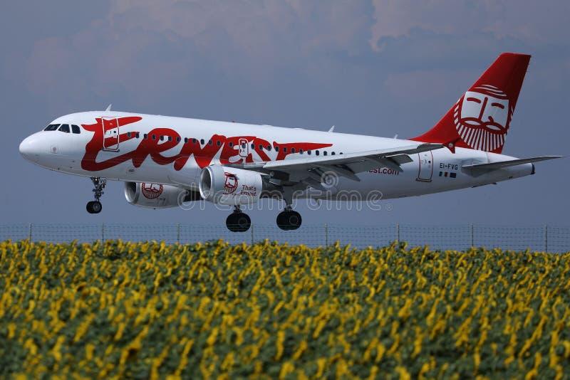 在向日葵领域的欧内斯特航空公司平面飞行 免版税库存图片