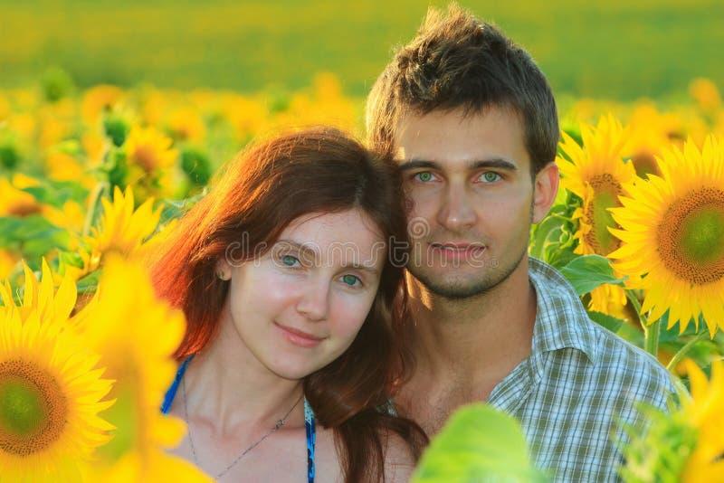 Download 在向日葵领域的年轻美好的夫妇 库存照片. 图片 包括有 红头发人, 夏天, 女孩, 纵向, 照亮, 英俊 - 30326154