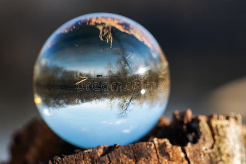 在吠声,rhytidome,反射的湖,森林,天空的清楚的石英球形 免版税库存图片