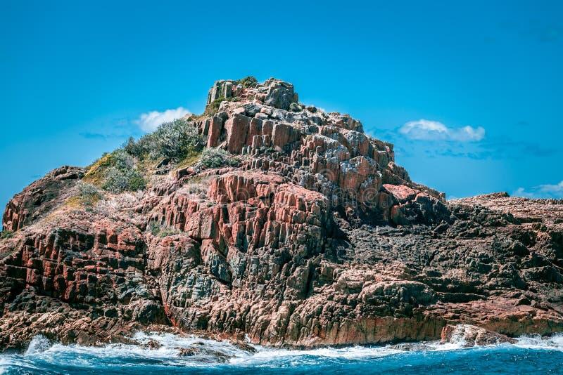在含羞草的独特的岩层晃动国家公园, NSW,澳大利亚 免版税图库摄影
