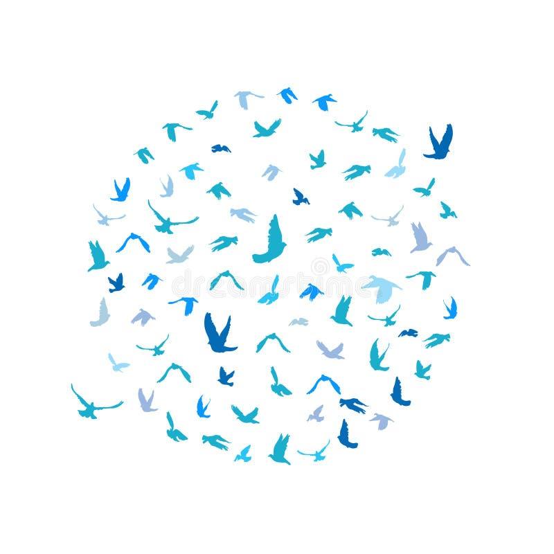 在和平概念和婚礼的一个圈子和鸽子设置的鸠设计 飞行的蓝色鸟剪影集合 向量 向量例证