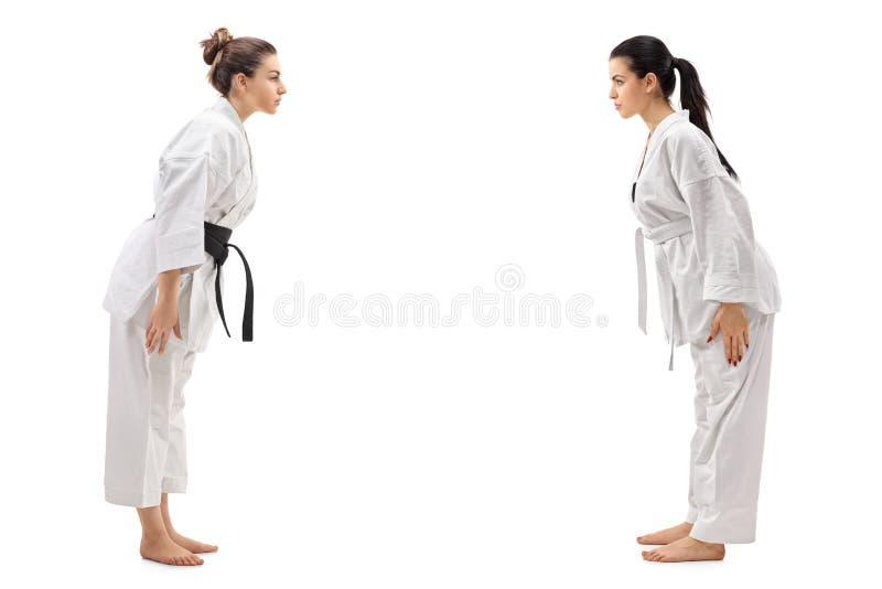 在和服打扮的两个少妇互相鞠躬 免版税库存图片